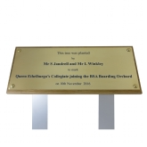 Brass Engraved Plaque with Wood Board and Double Tree Spike